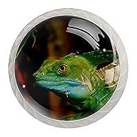 4個のキャビネットノブクリスタルガラスの引き出しハンドル緑色の爬虫類トカゲ ドレッサーデスクキッチンドア用