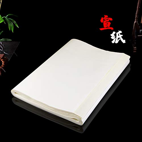 """Newbested 100 Sheets Writing Sumi Drawing Painting Sheng (Raw) Xuan Rice Paper for Chinese Japanese Calligraphy Practice Without Grids,13.4"""" x 27""""(34cm x 68cm)"""