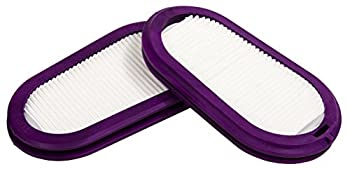 GVS SPR321 Elipse P100 Elipse Replacement Filter Both Small/Medium and Medium/Large  2-Pack