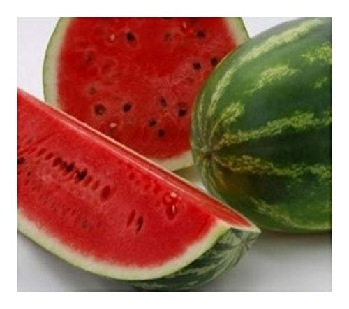 Watermelon Crimson Sweet - Wassermelone Crimson Sweet - 10 Samen