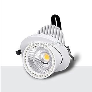 LONGWDS 25W 35W 50W COB LED Lámparas de troncal LED Downlights COB LED Empotrado Iluminación de la luz (Emitting Color : W...