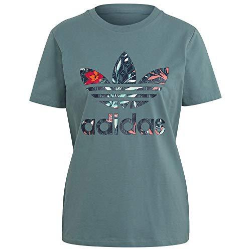 adidas Originals Women's HER Studio Short Sleeve T-Shirts (S, Hazy Emerald)