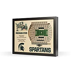 NCAA Michigan State Spartans 25-Layer Stadiumviews 3D Wall Art
