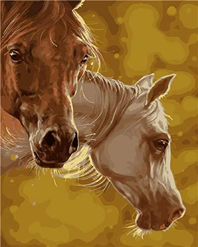 Empty DIY Ölgemälde nach Zahlen Kit für Erwachsene Pferdekopf handbemalte Wandmalerei Zeichnung Bunte Leinwand mit Pinseln Dekorationen Geschenke 40 x 50 cm
