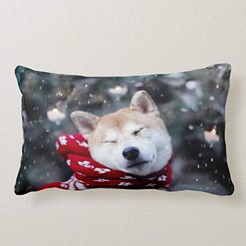 Perfecone Home Improvement - Funda de almohada (50 x 75 cm), diseño de perro de invierno