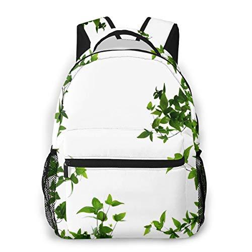Laptop Rucksack Daypack Schulrucksack Backpack Pflanzen Sie wenige dichte Hedera, Business Taschen Freizeit Rucksack Arbeits Schultasche für Herren Männer Schüler Schule