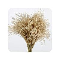 右店10ピース/ 20ピース装飾結婚式ホーム小さなパンパスリード草乾燥天然phragmites花花束3色、20ピース生色、S