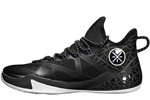 LI-NING Fission Series Wade Herren Professionelle Stoßdämpfung Basketballschuhe Futter Air Wearable Stylische Sport Sneakers ABAN011 ABAN029 ABAP027 ABAQ031, (Fission Td Black), 38.5 EU