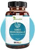 Sango Meereskoralle 3300mg aus Japan - hochdosiert 660mg Calcium 330mg Magnesium - Rein OHNE...
