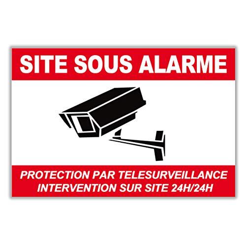Panneau Alarme/Pancarte Alarme en PVC + 4 Trous : Protection par télésurveillance - Intervention sur site 24H/24H- CRB (225 x 150 mm)