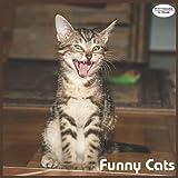 Funny Cats Calendar 2022: 16 Month Squire Calendar 2022
