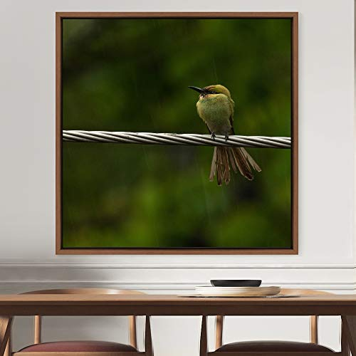 """bestdeal depot Bird on Wire Framed Canvas Wall Art Prints for Living Room,Bedroom Framed Artwork Decoration Ready to Hang - 16""""x16"""" inches"""