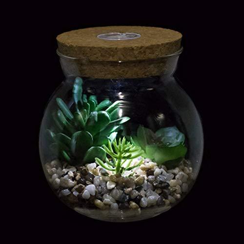 Piante Artificiali in Vaso con Luce a LED,Cactus Succulento Finto in Vetro Terrarium Vasi Fioriera con Design in Sughero Mini Bonsai Decorazioni Desktop da Interno per Soggiorno in Camera da Letto