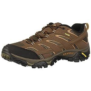 Merrell Men's Moab 2 Gtx Hiking Shoe, Earth, 8 M US