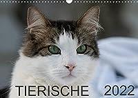 Tierische 2022 (Wandkalender 2022 DIN A3 quer): 12 Tier-Aufnahmen (Monatskalender, 14 Seiten )