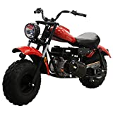 M MASSIMO MOTOR Warrior200 196CC Engine Super Size Mini Moto Trail Bike MX Street for Kids and Adults Wide Tires Motorcycle Powersport CARB Approved (Red)