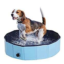 best dog paddling pools 2018 fun and cooling for your pooch. Black Bedroom Furniture Sets. Home Design Ideas