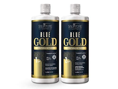 Salvatore Escova Progressiva Blue Gold 2x1000ml