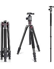 Neewer Statyw jednonożny ze stopu aluminium, 162 cm, z głowicą kulową 360 stopni, talerz szybkozmienny 1/4 cala, talerz i torba do kamery DSLR, kamery wideo, do 12 kg