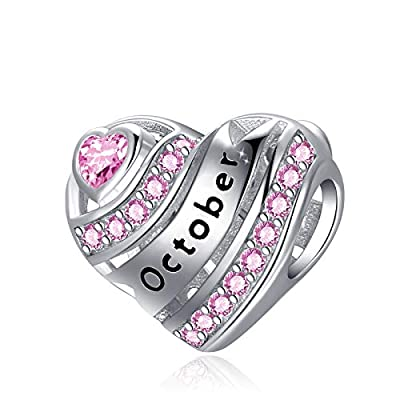 Amazon - 50% Off on Birthstone Heart Charms for Charms Bracelet-925 Sterling Silver