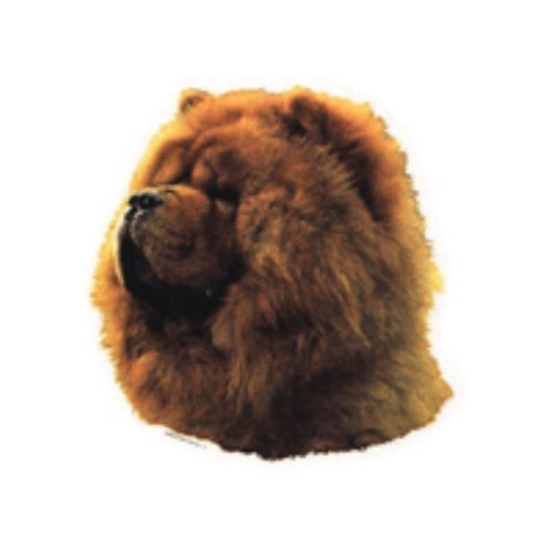World Stickers Sweden AB Autocollant Chow Chow taille medium