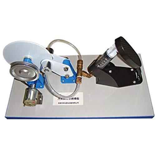 AIOXY Auto-Bremsen-System Modell Elektrische hydraulische Bremse Physikalische Praxis Lehrinstrumente Zeigen die Struktur und Eigenschaften von Auto-Bremsen