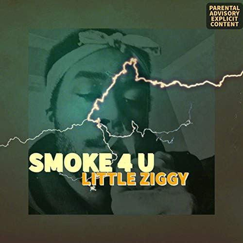Little Ziggy