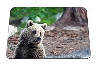 22cmx18cm マウスパッド (夏の森のクマ) パターンカスタムの マウスパッド