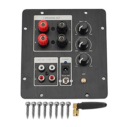 Pineapplen Scheda Amplificatore Altoparlante Subwoofer TPA3116 Amplificatore Audio 50Wx2 + 100W con Uscita 2.0 Indipendente
