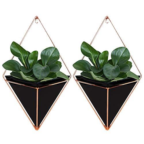 Starall 2 stücke Trigg Wandvase & Geometrische Deko – Übertopf Für Zimmerpflanzen, Sukkulenten, Luftpflanzen,Kunstpflanzen und Mehr, Keramik/Messing (Black, S)