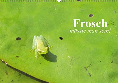 Frosch müsste man sein! (Wandkalender 2020 DIN A2 quer)