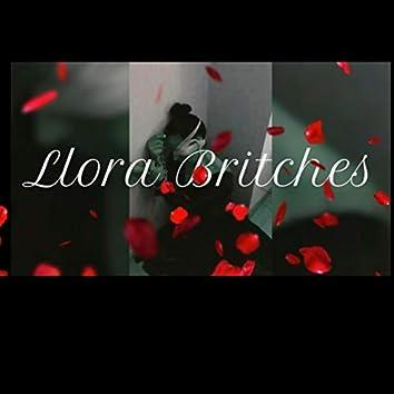 Llora Britches (feat. Enrique Rosales Azrael, Patricia Pons, Sergio Garay, Iván Muñoz, Silvia Gers, Graciela Folgueras, Electric Xandra, David Lamb, Eugenio Toribio, Rocío Alonso & Roberto Arnau)