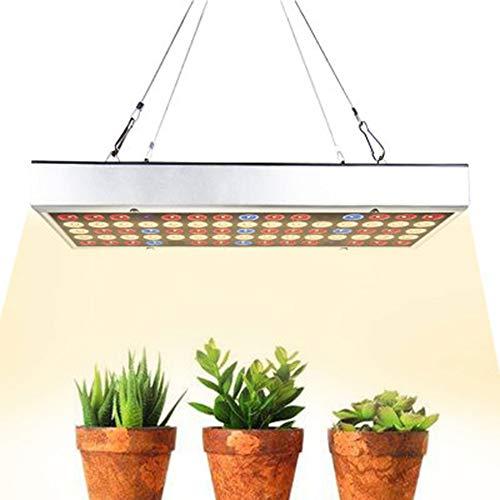 Meilleures ventes Usine de meubles de maison élèvent la lumière LED élèvent la lumière 150W 75 Leds Led lumière croissante avec le bleu rouge élèvent des lumières pour les plantes d'intérieur Légum