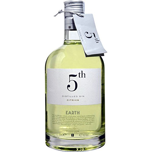 GIN 5th EARTH