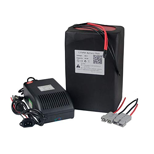 BtrPower 48V E-Bike Battery 10AH - 50AH Lithium ion / Lifeo4 Battery Pack with 5A Charger,50A BMS for 500W-3000W Motor (48V 20AH Lifeo4)