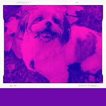 Spectaculair (Eenzame Honden)