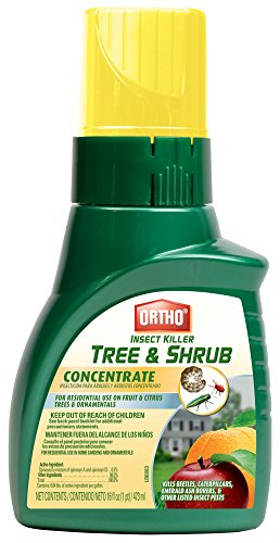 Ortho Insect Killer Tree & Shrub Concentrate, 16 oz.