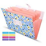 Skydue Expanding File Folders with 8 lables, Floral Printed Accordion Document Folder Organizer US Letter Size