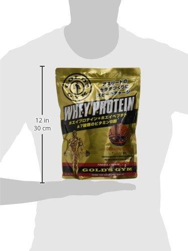 ゴールドジム(GOLD'SGYM)ホエイプロテインチョコレート風味720g