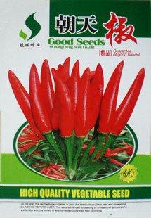 Les semences d'origine poivre graines sac de légume Pod Super chaud Paquet G de poivre de couleur 10 se rapporte au jour