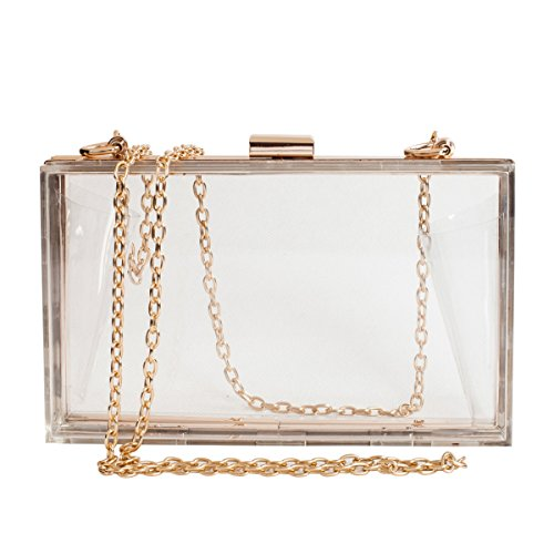 Cute Clear Crossbody Purse Bag Acrylic Box Clutch for Women, Transparent Stadium Approved Handbag for Sports Game Day, Prom, PGA, NFL & Concerts with Gold Chain Strap