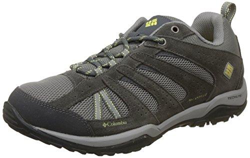 Columbia Dakota Drifter, Chaussures de Randonnée Basses femme, Gris (Light Grey/Sunnyside 060), 37.5 EU