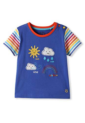 Algodón orgánico - Bebé Niña Niños pequeños - Camiseta de Manga Corta - Niñita Niñito (0-4 Años) (6M (3-6 Meses), Azul)