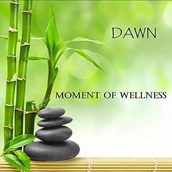 Moment of Wellness