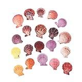 TL TONGLING Conchas Coloridas Conchas Marinas Decoradas Conchas de Vieira Conchas artesanía decoración Adorno Hecho a Mano decoración casera