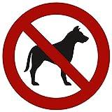 Strobo Pegatina con señal de prohibición de fumar, con protección UV, señal de advertencia para exteriores e interiores, señal de prohibido fumar