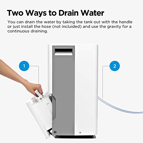 best dehumidifiers for basement