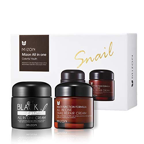 Premium Snail Repair Cream, Intensive Care, Korean Skin Care with Black Snail Mucin & Plant Extracts, Facial Moisturizing Snail Mucin Extract, Wrinkle Care, Blemish Care and Firming (75ml, 2.5 fl oz)