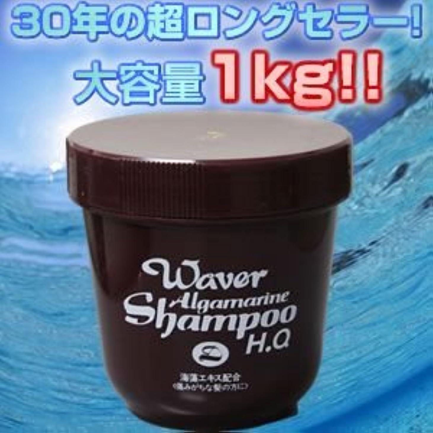 噴出するしわ防水『ウェーバー アルグマリーン リンス 各1kg 』