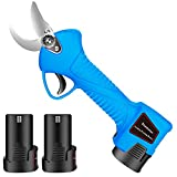 Best Electric Pruners - BLUESTAMEN Cordless Electric Pruning Shears 2 Lithium Battery Review